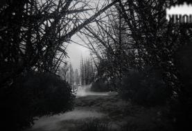 Инди-хоррор Kholat бесплатно в Steam